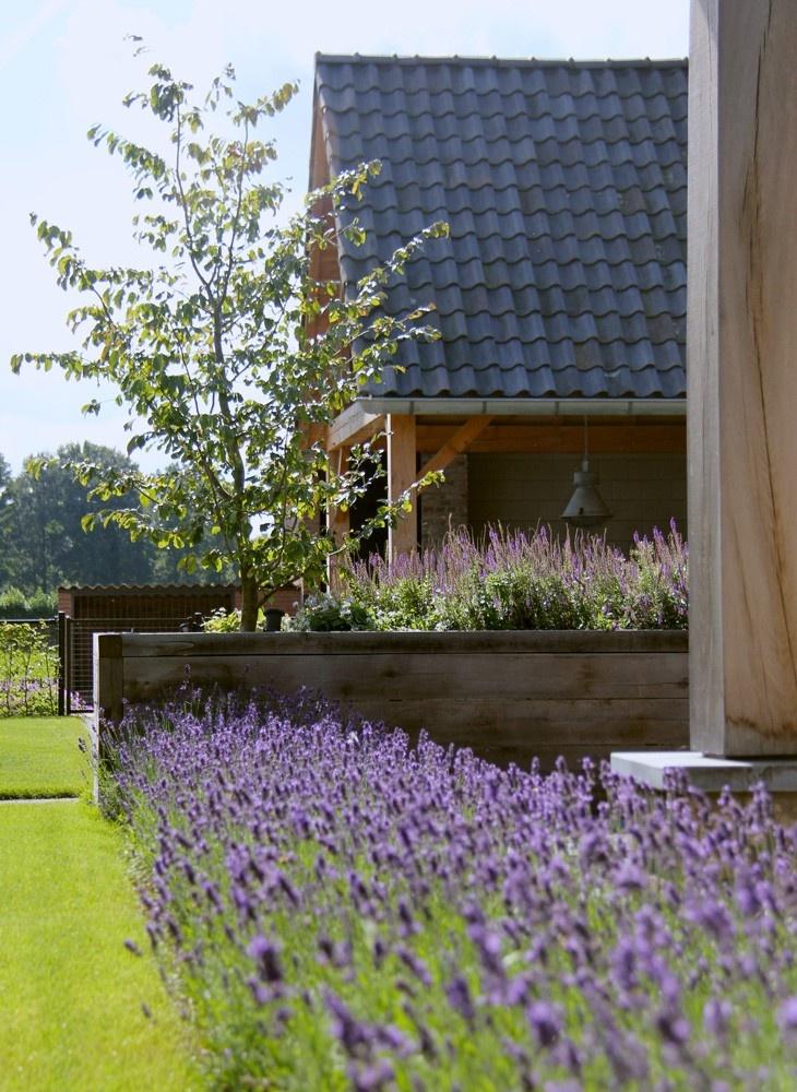 Tuin Inspiratie Ideeen En Voorbeelden Langenhuizen Hoveniers